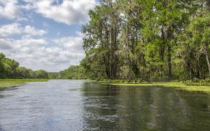 The Ichetucknee River