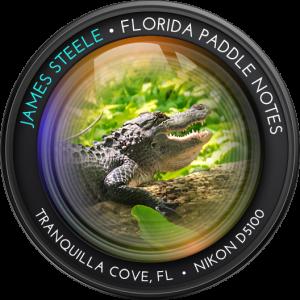 Graphic Camera Lens