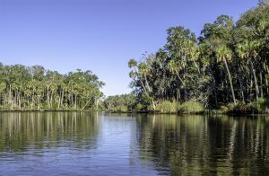 The Chassahowitzka River