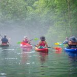 Paddle into a misty Ginnie Springs