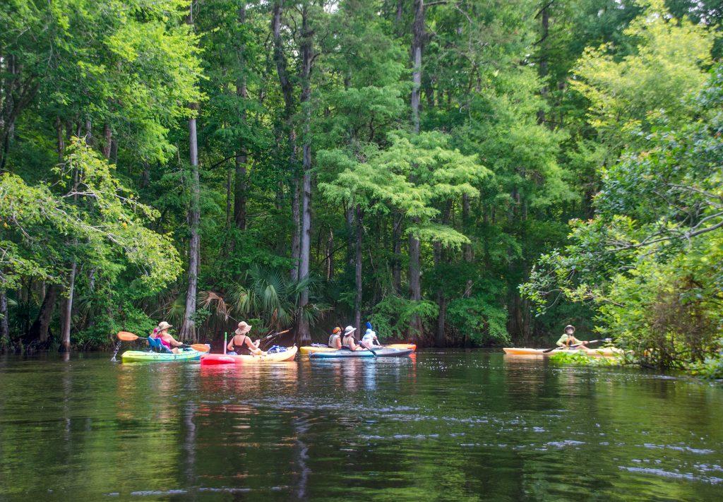 Paddling the Ocklawaha River