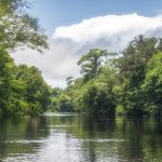 The Santa Fe River