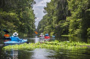 Camp's Canal on Prairie Creek