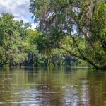 The Withlacoochee River