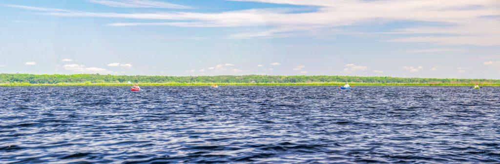 Alachua Lake aka Paynes Prairie