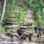 Layered Limestone