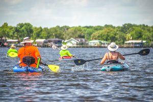 Paddle Out-St. John's River