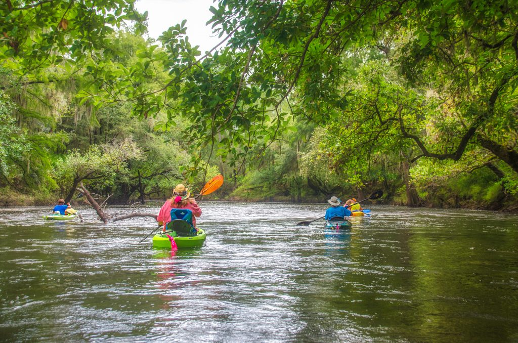 Paddling the Shoals