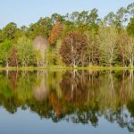 Colorful trees reflecting on Lake Fanny