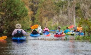 Paddling the Canal to Cross Creek