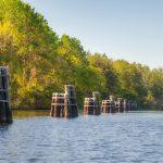 Pilings at Buckman Lock