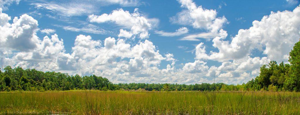 Smokehouse Prairie Sky