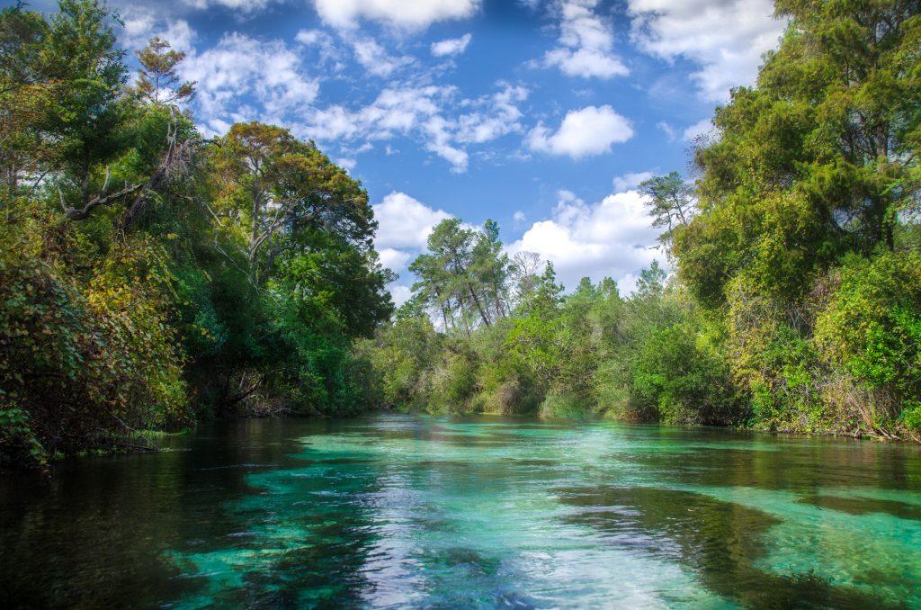 The Weeki Wachee River
