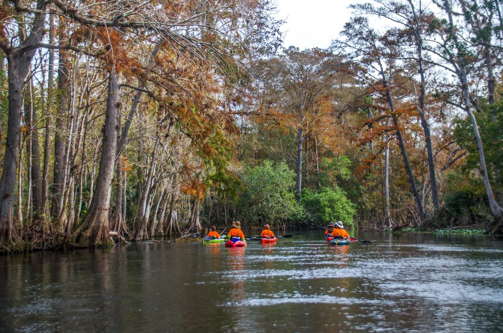 Approaching the Ocklawaha River