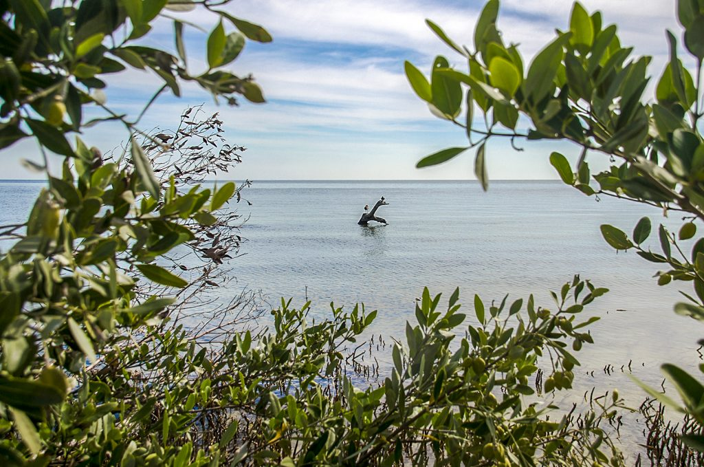 The Gulf from Atsena Otie
