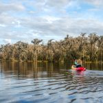 Paddling the Southern Shoreline - Santa Fe Lake