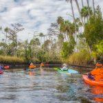 Paddling Otter Creek