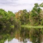 Alexander Spring Creek