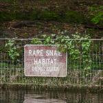 Rare Snail Habitat