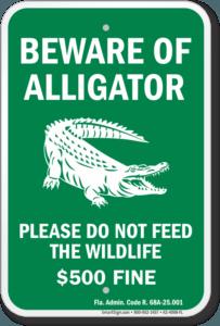 Beware of Alligator