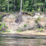 Eroded Bluff on the Suwannee River