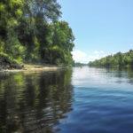 Paddling the Suwannee River