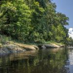 Rocky Shoreline along the Suwannee River