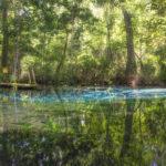 Approaching Alligator Spring