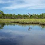 Heron Lands - Styles Creek