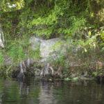Indian Mound - Potts Preserve