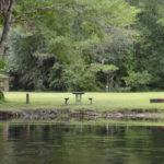 Potts Preserve Campsite