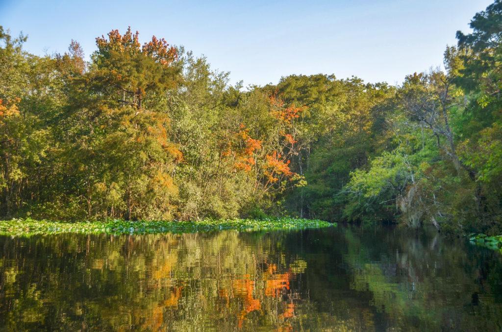 Bear Creek in September