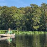 James on the Ocklawaha River - Bear Creek