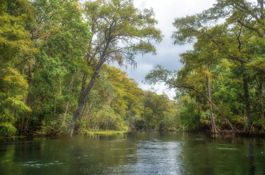September on the Silver River