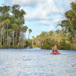 Paddling the Chassahowitzka River