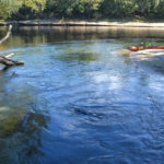 Suwannee River from Mearson Spring