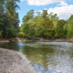Troy Spring - Suwannee River