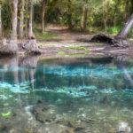 Canon Springs - Ocklawaha River