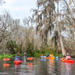 Drifting on the Wekiva River