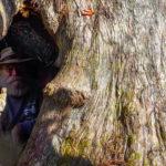 James inside Cypress