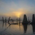 Ocklawaha Sunrise