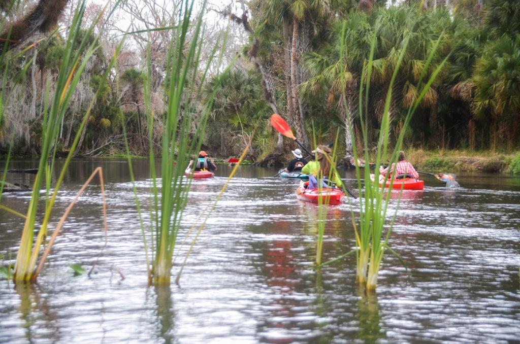 Paddling on the Wekiva River