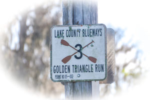 Golden Triangle Run