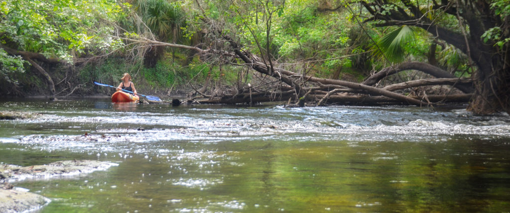 Approaching an Alafia River Shoal