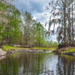 Bend in Sweetwater Creek