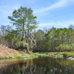 Enter Sweetwater Creek
