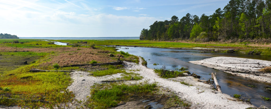 Flow to the Ocklawaha River