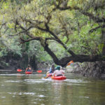 The Scenic Alafia River