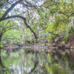 The Alafia River