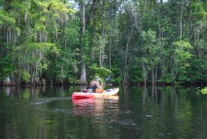 Entering the Ocklawaha River